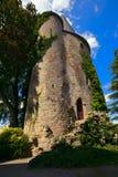 Gammalt torn Arkivbild