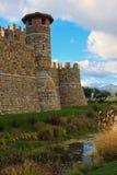gammalt torn för slott Royaltyfri Bild