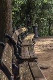 gammalt trä för bänk arkivfoto