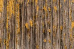gammalt trä för bakgrund Royaltyfri Bild