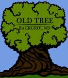 gammalt trä för bakgrund Bild av en stor stam och en tät krona av ett gammalt träd Royaltyfri Illustrationer