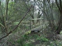 gammalt trä för bro Fotografering för Bildbyråer