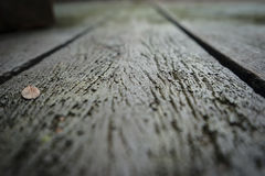 gammalt trä för golv Royaltyfria Foton