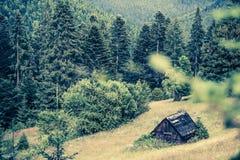 gammalt trä för hus Arkivfoto