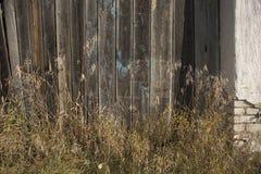gammalt trä för staket Arkivfoto