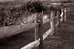 gammalt trä för staket Arkivbild