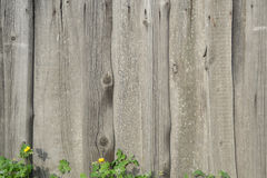 gammalt trä för staket Royaltyfri Fotografi