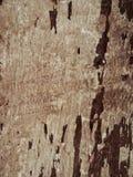 Gammalt trä för tappning arkivbild