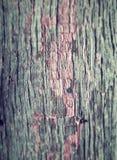 Gammalt trä för tappning royaltyfri fotografi