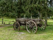 gammalt trä för vagn Royaltyfri Bild