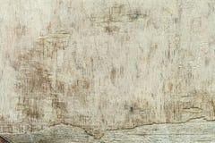 gammalt trä Lantlig modell på den vita bakgrunden Wood bakgrundstextur, tappningbräde, lantlig wood yttersida, grovt träd Royaltyfri Fotografi