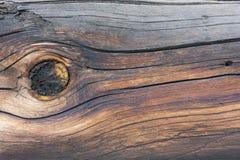 Gammalt trä som bakgrund Arkivbilder