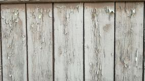 Gammalt trä som målas i vit arkivfoto