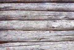 Gammalt trä stiger ombord Arkivfoto