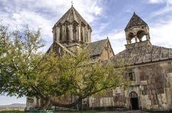 Gammalt träd nära kloster av StJohn det baptistiskt Arkivbild