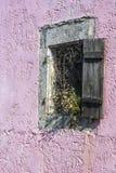 Gammalt träfönster med torkade blommor Arkivbild