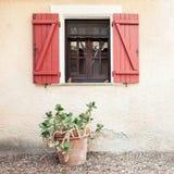 Gammalt trähem- fönster med öppna slutare och den tropiska växten i blomkruka royaltyfri foto