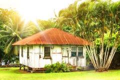 Gammalt trähus som omges av palmträd Arkivfoton