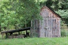 Gammalt träskjul i skogsmark Arkivfoto