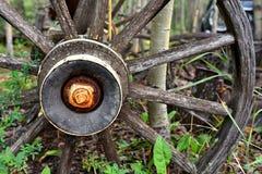 gammalt trävagnhjul royaltyfri foto