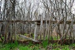 gammalt tr? f?r staket arkivbild