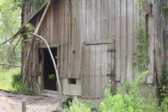 gammalt trä för ladugård Arkivbild