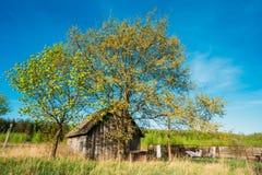 Gammalt träbyhus i sommar Sunny Day Royaltyfri Bild