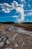 Gammalt troget i Yellowstone Arkivbild