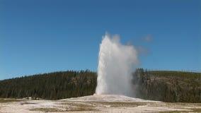 Gammalt troget i Yellowstone stock video