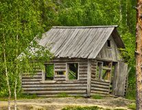 Gammalt typisk ryskt trähus i skogen royaltyfria foton