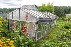 Gammalt växthus för växande grönsaker som göras från kasserad materi Arkivfoton