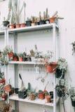 Gammalt växthus, i europeisk stil Royaltyfri Foto