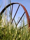 gammalt vagnhjul för gräs fotografering för bildbyråer