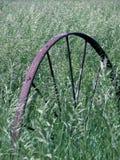 gammalt vagnhjul för gräs royaltyfri fotografi