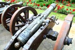 Gammalt vapen i trädgården Arkivfoto