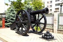 Gammalt vapen med kärnor Royaltyfri Foto