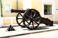 Gammalt vapen med kärnor Royaltyfria Bilder