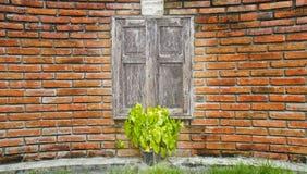 Gammalt wood fönster på den krökta tegelstenväggen. Arkivfoton