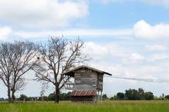 Gammalt wood hus med det döda trädet Royaltyfri Bild