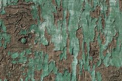 Gammalt wood paneler för grunge som används som bakgrund Fotografering för Bildbyråer