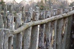 Gammalt wood staket i ett horisontalfoto Arkivfoton
