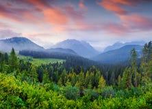 Gamme de montagne de Cresta di Enghe dans la brume de matin images libres de droits