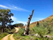 Gammon ranges, south australia Stock Photo