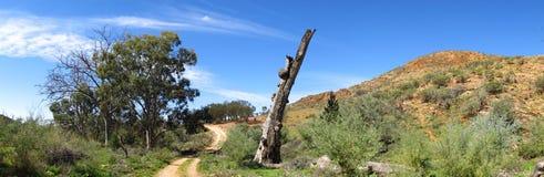Gammon ranges, south australia Royalty Free Stock Photo