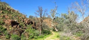 Gammon ranges, south australia Stock Photos