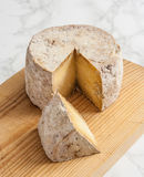 Gamoneu乳酪 库存图片