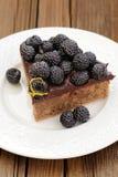 Κομμάτι της νόστιμης πίτας σοκολάτας με το ganache, που διακοσμείται με φρέσκο Στοκ Εικόνες