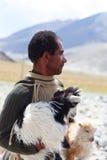Ganadero con las cabras, la India Fotos de archivo