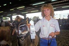 Ganador de la cinta con la vaca del jersey/de Holstein, Los Ángeles, feria del condado, Pomona, CA Imagen de archivo