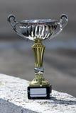 Ganador del trofeo foto de archivo libre de regalías